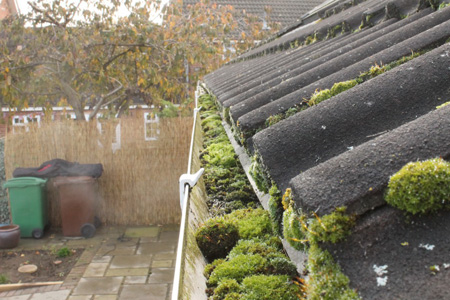 Guttering blocked with moss